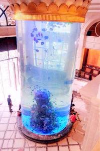 Cylindrical Aquarium pictures & photos