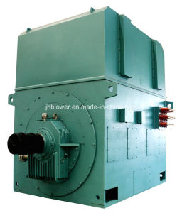 Three-Phase Asynchronous Frequency Conversion Motor (YXPTKS630-3200KW)
