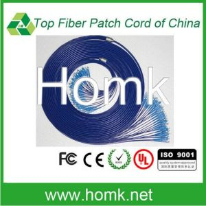 St LC Single Model Multi Model Fiber Optic Pigtail pictures & photos
