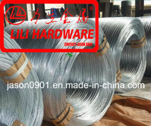 Steel Wire, Galvanized Steel Wire, Z2 Packing, DIN17223 pictures & photos
