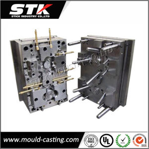 SGS Plastic Injection Mold Plastic Hook Mould with Hasco Base pictures & photos