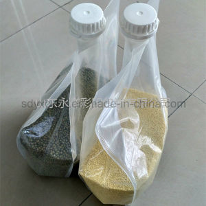 Laminated PE and PA Transparent Grains Plastic Bag with Spout pictures & photos