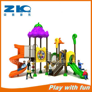 Amusement Park Outdoor Playground Equipment for Commercial pictures & photos