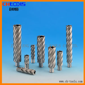 High Speed Steel Core Drill with Weldon Shank (DNHP) pictures & photos