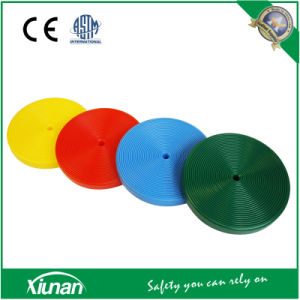 Blow Moulding Plastic Swing Disc with Rope pictures & photos