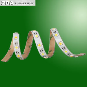 IP67 Silicone Waterproof LED Flexible Strip pictures & photos