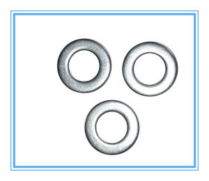 M6-M56 of Spring Lock Washers with Flat Gasket pictures & photos