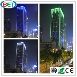 110V/120V/220V/230V SMD3528 LED Christmas Lighting for Decorative Light pictures & photos
