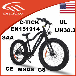 Brushless Motor Electric Fat Bike pictures & photos