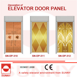 Stainless Steel Door Panel for Elevator Cabin Decoration (SN-DP-310) pictures & photos
