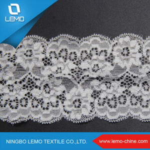 Elastic Tricot Lace of Nylon Spandex, Fancy Lace pictures & photos