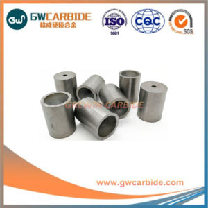 All Sizes and Shape Customized Tungsten Carbdie Tools pictures & photos