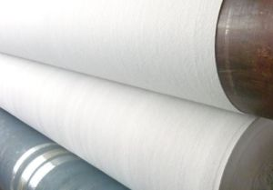 Non Woven Geotextile Fabric Manufacturer for Anti-Pull Breathable pictures & photos