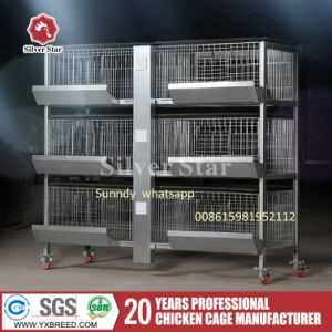Poultry Farms Equipment Machine Bird Cage Broiler Chicken Pakistan pictures & photos