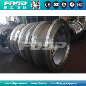 Gold Service Pellet Mill Spare Parts Ring Die pictures & photos