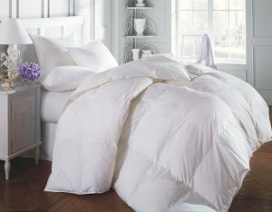 100% Polyester Down Feather Quilt / Duvet / Comforter Single or Twin Size pictures & photos