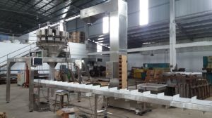 Automatic Small Screws and Nails Weighing Filling in Carton System pictures & photos