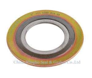 Flexible Graphite and Steel Spiral Wound Gasket Sealing pictures & photos