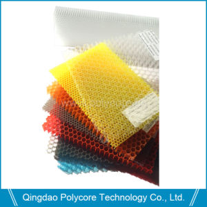 Plastic Honeycomb Board (PC6.0) Transparent PC Honeycomb Core pictures & photos