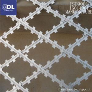 Bto-22 Galvanized Razor Barbed Wire (KDL-25) pictures & photos