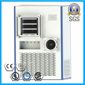 Freeze Dryer with 0.5-0.7 Square Meters pictures & photos