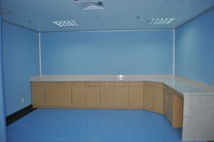 Plastic Wall Panel Protection for Hospital pictures & photos