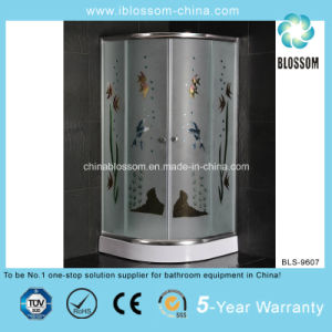 Hot Sale Colorful Acid Glass Shower Room (BLS-9607) pictures & photos