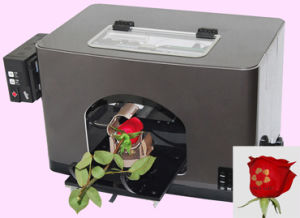 Red Rose Silver and Gold Ink Flower Printer pictures & photos