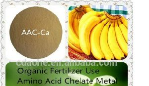 Fertilizer Calcium Chelate pictures & photos