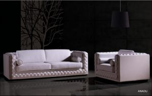 Genuine Leather Sofa Set ,Loveseat Sofa SL012