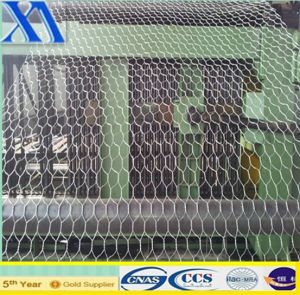 High Quailty Hengshui Hexagonal Wire Mesh for Construction pictures & photos