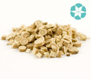 Astragalus Extract / Astragalus Membranaceus (Fisch.) Bge. /Polysaccharides pictures & photos