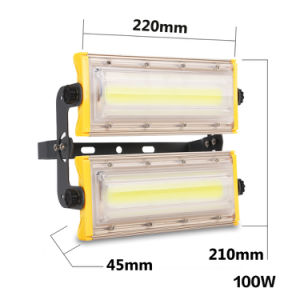 Newest Style Outdoor 100W LED Module Flood Light pictures & photos