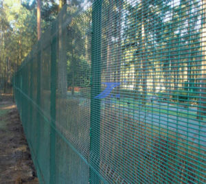 High Security Wire Mesh Fence (TS-J61) pictures & photos