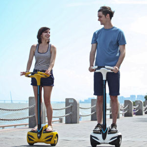 Inmotion Electric Scooter Personal Transporter