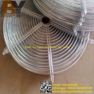 High Quality Galvanized Fan Guard pictures & photos