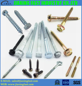 Hex Head Lag Screw / Hex Head Lag Screw / DIN571/ Hex Washer Head Wood Screw / Hex Flange Head Screw / Square Head Wood Screw/ Umbrella Thread Screw/Eye Screw
