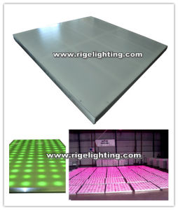 Factory Wholesale 1000X1000lite LED Digital Dance Floor Welcome to Inquiry pictures & photos