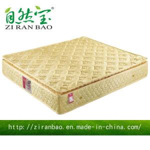 Golden Furniture Offer Low Price Pocket Spring Mattress (ZRB-347)