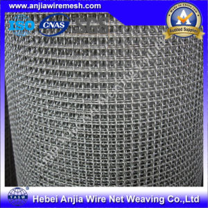 Stainless Steel Square Wire Mesh with (CE and SGS) pictures & photos