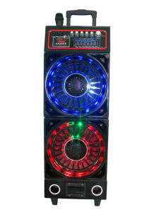 "Double 10"" Colorful Battery Speaker 633c pictures & photos"