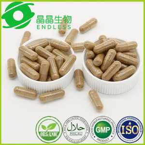 Homeopathic Medicine Deficiency of The Kidney Cordyceps Extract Powder Capsule pictures & photos