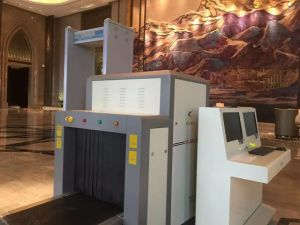Large Tunnel Size X Ray Scanning System pictures & photos
