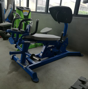 Good Quality Hoist Gym Equipment MID Row (SR2-06) pictures & photos