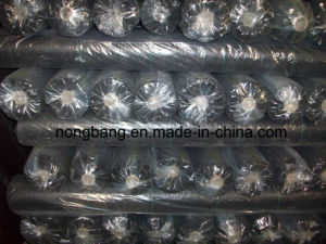 Garden PP Woven Geotextile Fabric 1.05m*100m/Roll; Ground Cover; Weed Control Mat pictures & photos