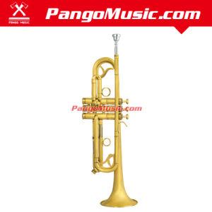 Bb Tone Brass Body Trumept (Pango PMTR-790) pictures & photos