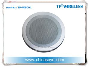 Ceiling Wireless Speaker pictures & photos
