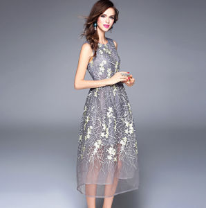 Summer New Design High-End Sleeveless Net Yarn Lace Embroidery Long Dress pictures & photos