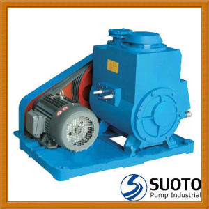 2X Series Oil Type Rotary Vane Vacuum Pump pictures & photos