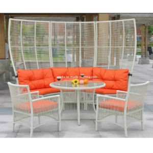 Outdoor Patio Garden Rattan Wicker Sofa Set pictures & photos